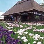 13-120 十和田・七戸の花めぐり